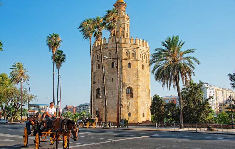 altın kule, torre del oro