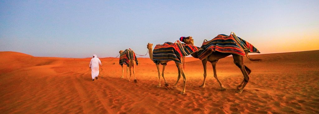 dubai de abu dabide türk rehberle çölde safari ve deveye biniş