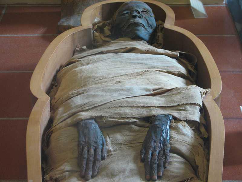 was in den Vatikanischen Museen zu sehen ist