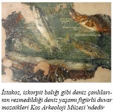 kos-roma-evi-mozaik