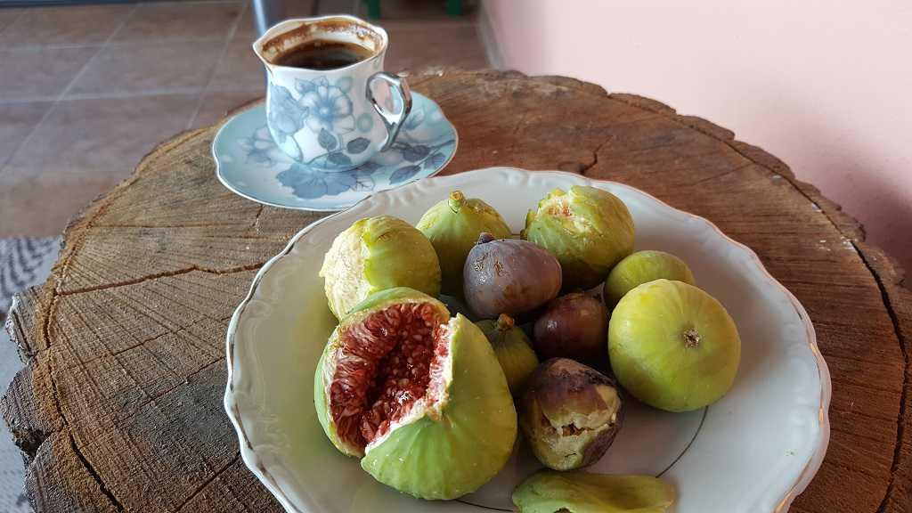 marmara island local fruits